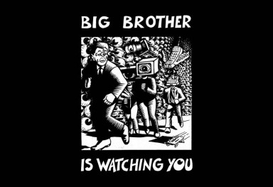 « Big Brother is watching you » - Paris, 2010